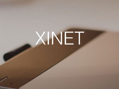 Xinet: Dynamic Digital Asset Management